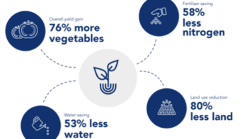 Graphic from Group Sustainability Report 2017 Gordan graphic no note below