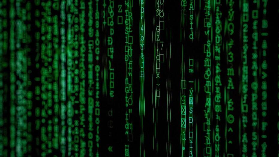 egro, grodan, e-gro, data driven, sustainable growing